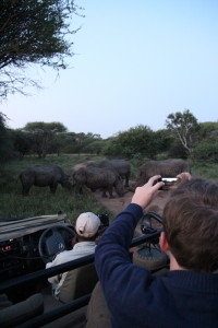 Op safari in Zuid-Afrika