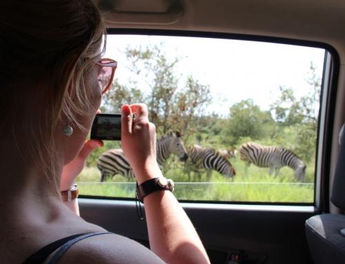 Safari fotografietips