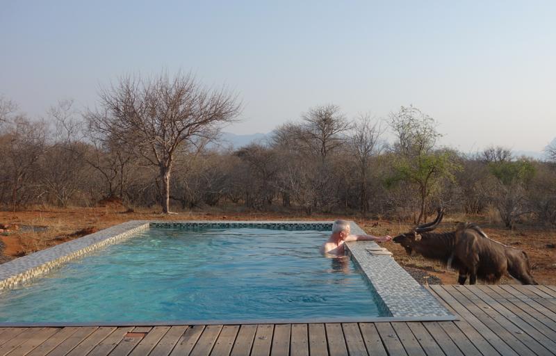 Nyala-Villa-Blaaskans-Zuid-Afrika