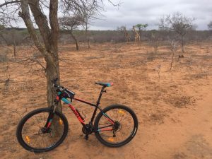 Mountainbiken in Zuid Afrika