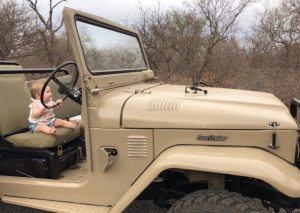 Op safari baby Zuid-Afrika