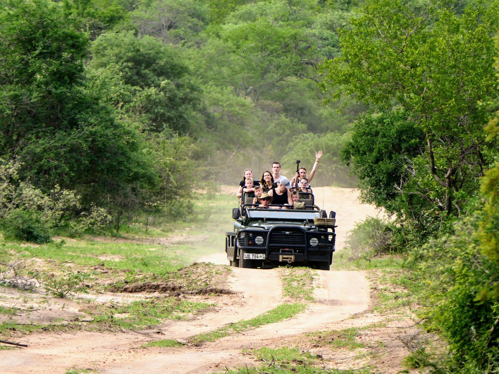 Groepsreis safari Zuid-Afrika