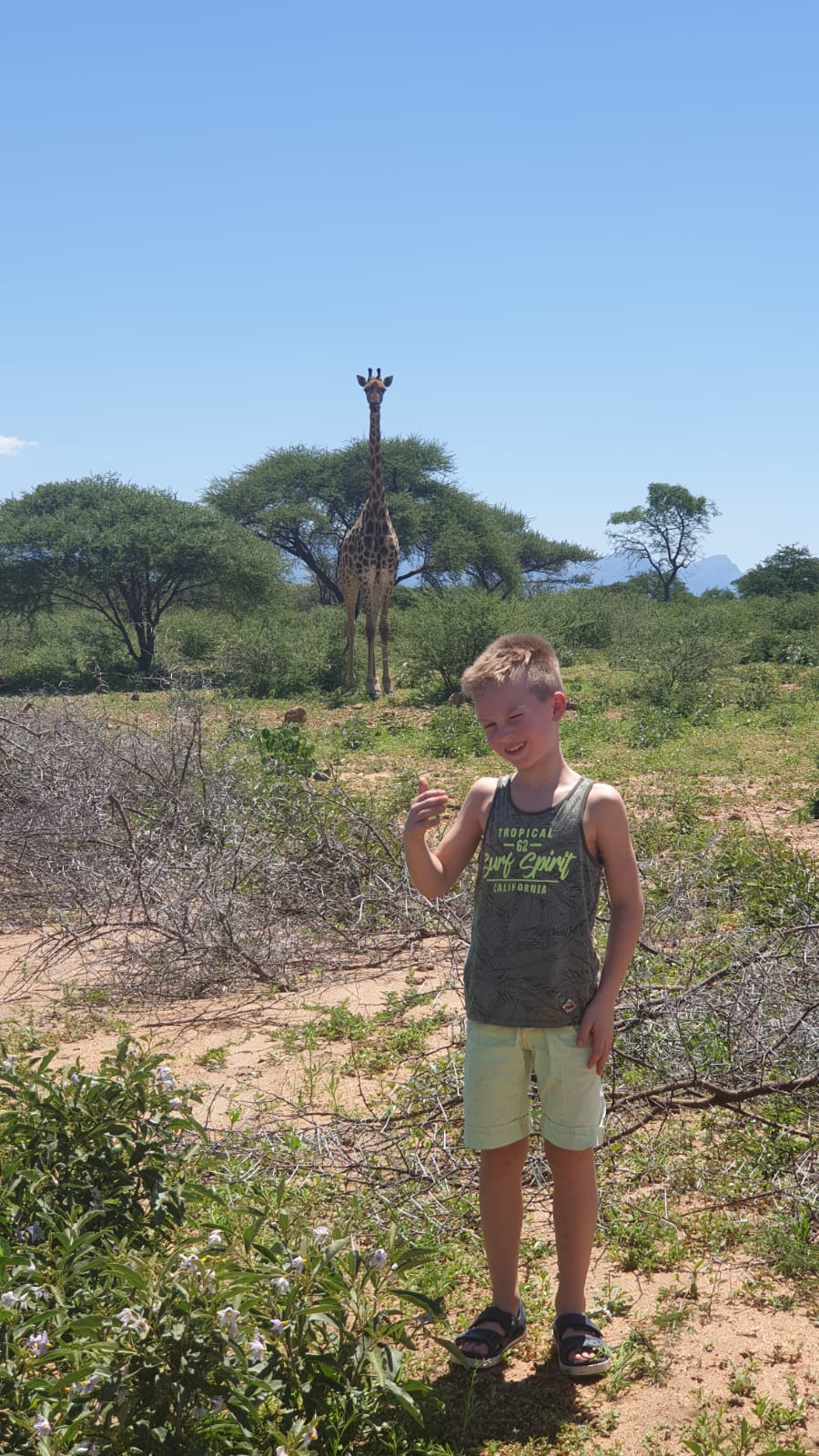 Zuid-Afrika familiereis - Giraffe